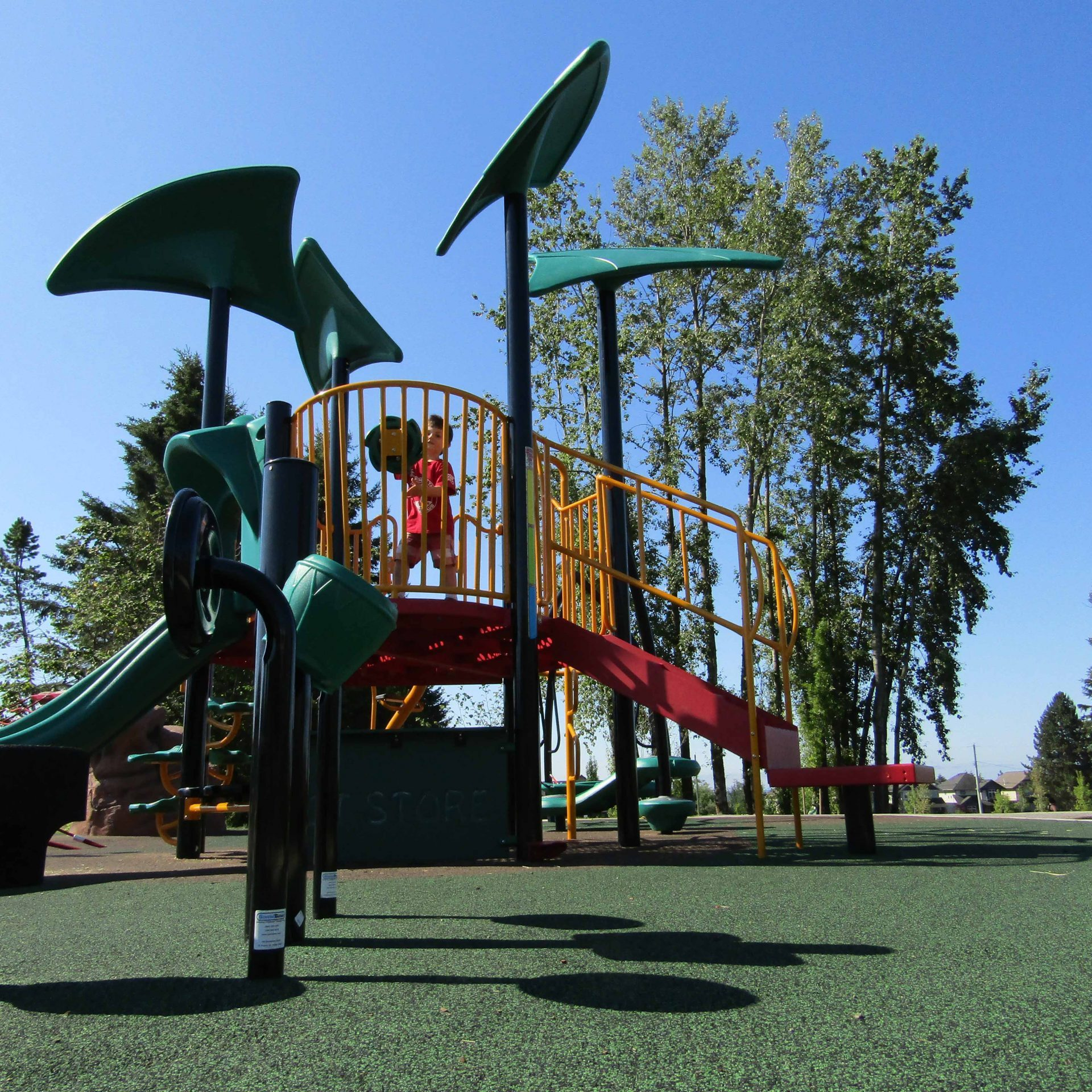 Routley Park Langley BC